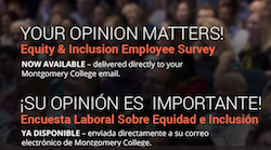 Take Time Today to Fill Out the Equity and Inclusion Survey
